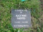 NAESTED Alice Mary 1923-1966