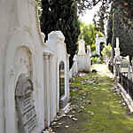 Western Cape, PAARL, NG Strooidakkerk, church yard