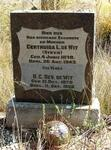 Free State, BETHLEHEM district, Clarens, Pietersdal 1207, farm cemetery