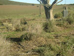Western Cape, RIVERSDALE district, Albertinia, Baakfontein 237, Cooper Siding, farm cemetery